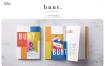 潮流主题色服装类展示样机BUNT Colorful Lookbook(1)