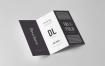 企业三折页样机模板展示素材   智能贴图Tri Fold DL Brochure Mock up 3