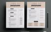 高端精品简历模板展示2 page resume-template(1)