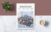 生活类画册杂志模板素材下载Multipurpose Magazine