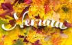美食主题标题类装饰字体/秋季主题旅行字体风格英文装饰字体下载Nemara Script Font