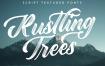 甜点冰淇淋手写干画笔介质手写英文字体下载Rustling Trees