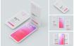 简约概念版iPhone 12 Pro模型集样机模板素材 AWFPUFA