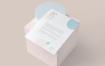 美国信纸大小的文具纸传单海报模型素材下载JS3VZ4K