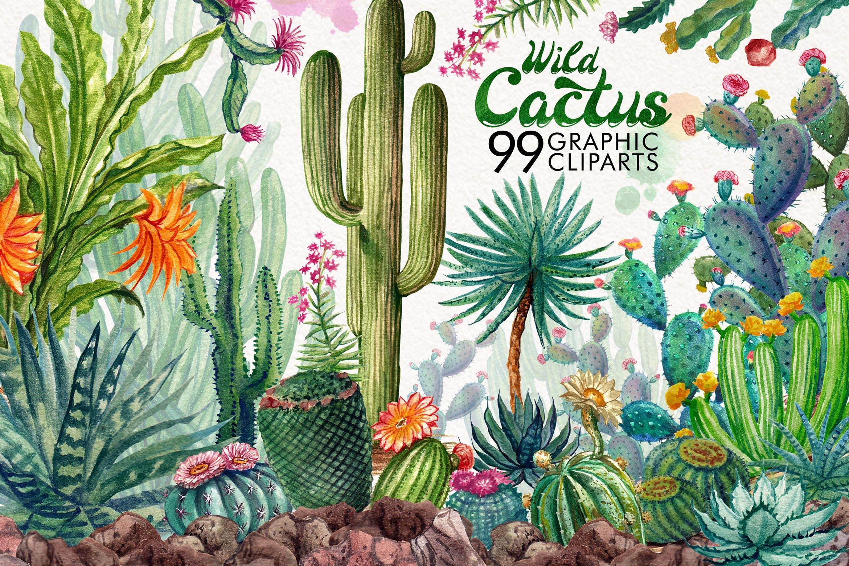 植物仙人掌系列元素花纹元素下载Watercolor Cactuses插图