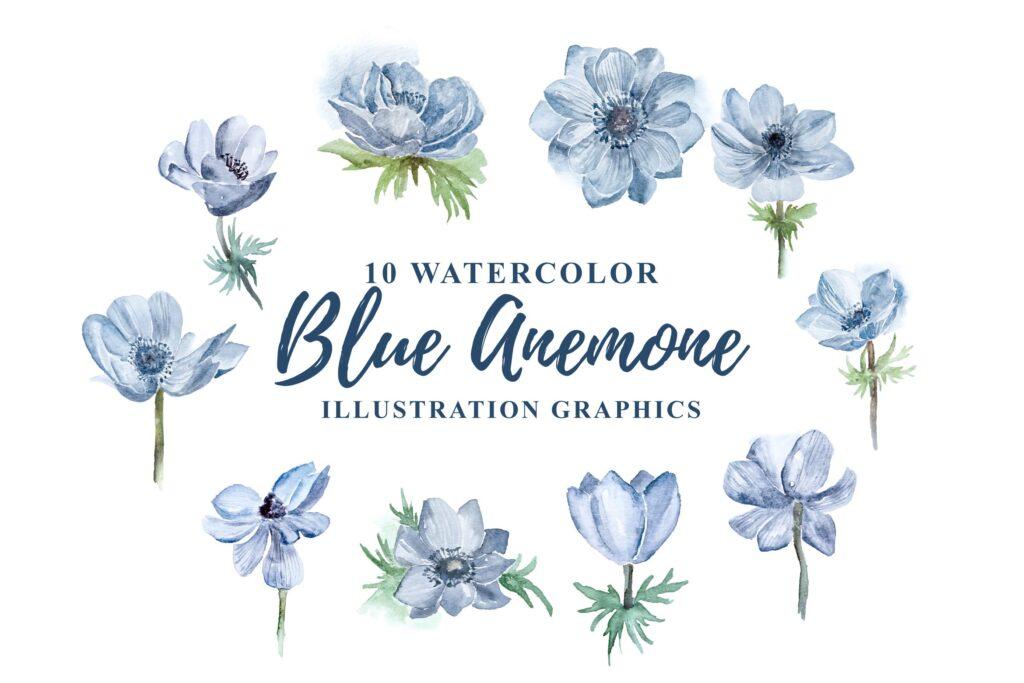蓝色海葵花卉水彩插画剪纸及装饰元素10 Watercolor Blue Anemone Flower Illustration插图
