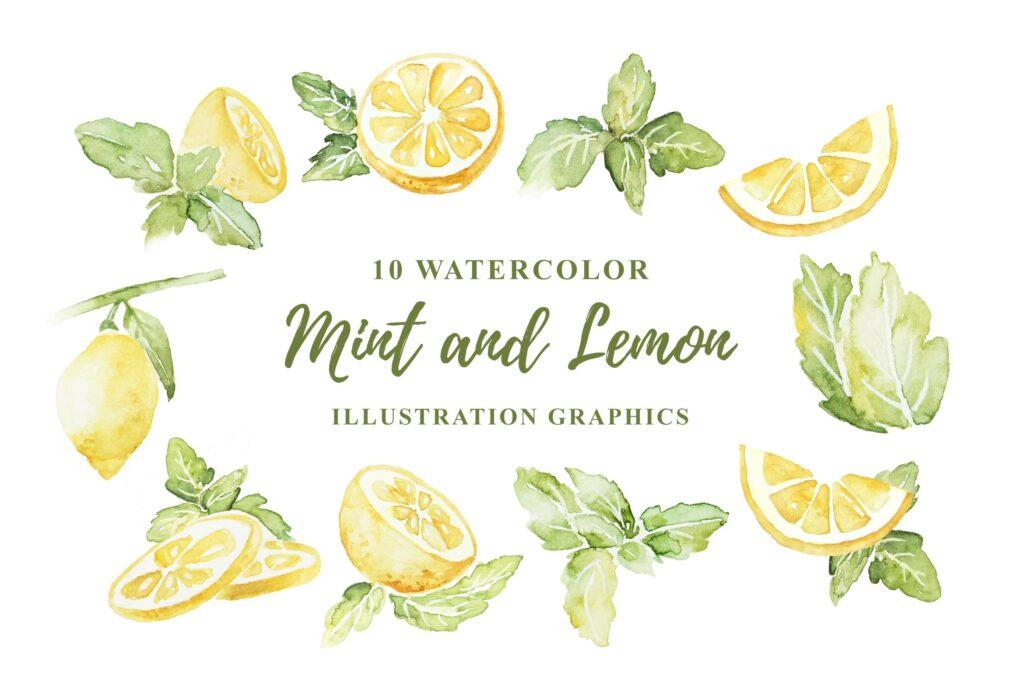 10 个水彩薄荷柠檬插画水彩剪纸及装饰元素10 Watercolor Mint and Lemon Illustration Graphics插图