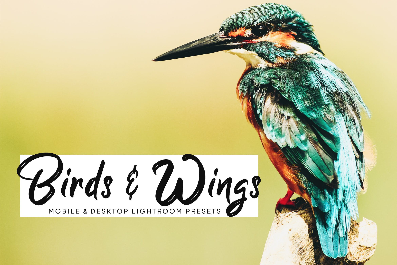 鸟类摄影优化照片效果处理LR预设Birds Wings Mobile Desktop Lightroom Presets插图