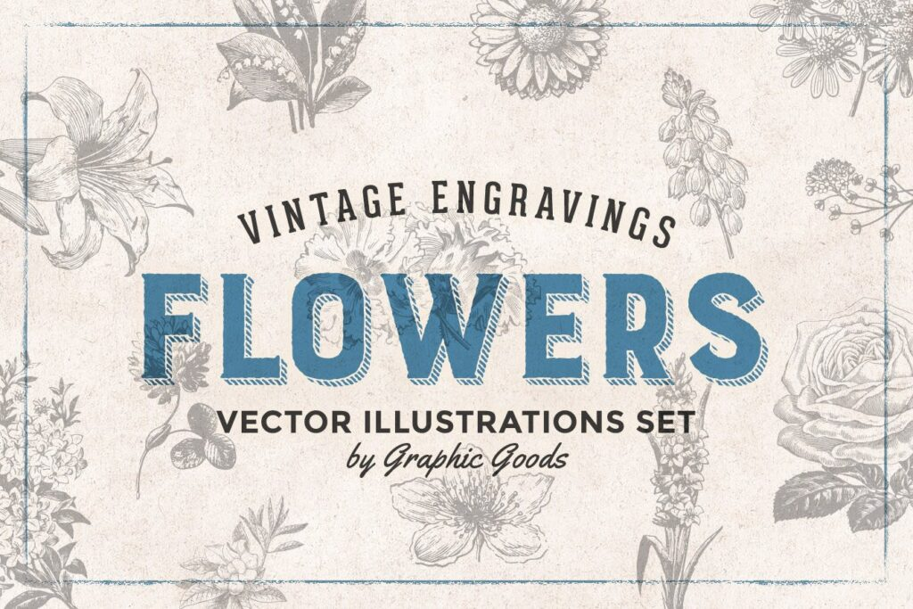 66个矢量花卉品种的古典风格版画Flowers Vintage Engraving Illustrations插图