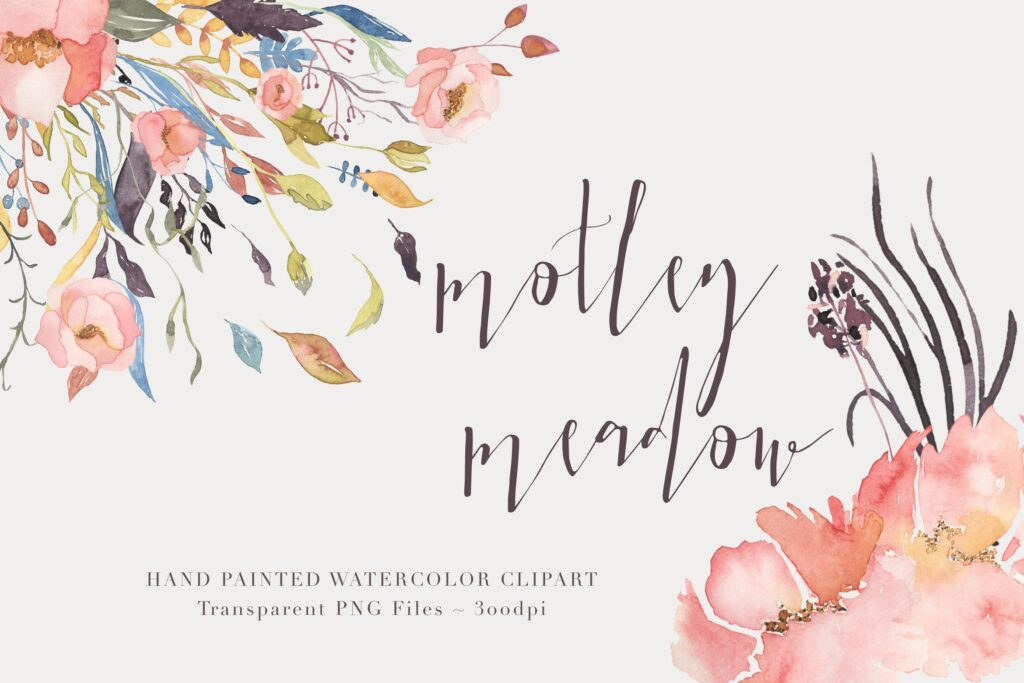 50个独特手绘花卉/叶子图案创意组合Motley Meadow Watercolor Floral Clipart Set插图