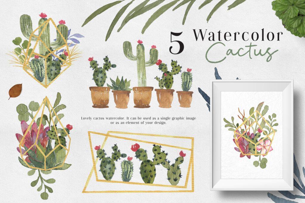 水彩仙人掌创意水彩图案设计Ofi 5 Watercolor Cactus Graphic插图