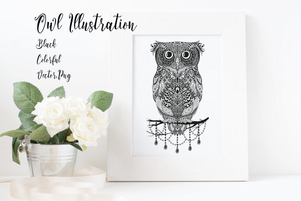 精致手绘猫头鹰插图装饰图案纹理Owl Illustration Black Colorful插图