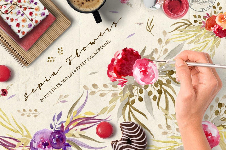 手绘水彩花卉元素婚礼邀请函装饰元素下载Sepia Flowers插图