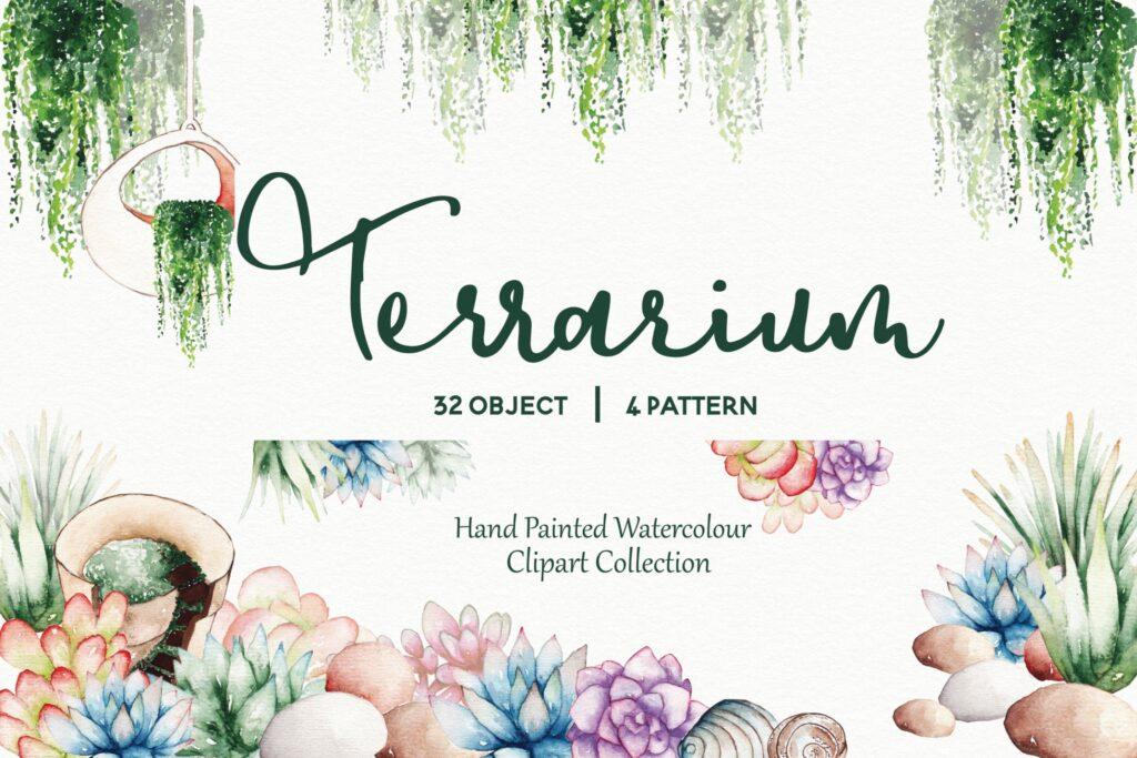 精致手绘元素企业品牌服装装饰图案花纹Succulent Terrarium Watercolor插图