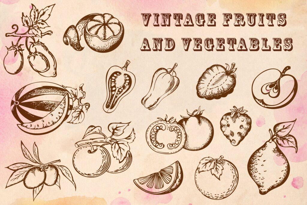 手绘矢量水果和蔬菜复古风格素材Vintage Fruits and Vegetables插图