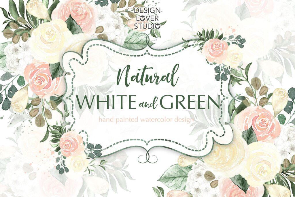 婚礼邀请函装饰图案花纹元素下载Watercolor flowers white and green design插图