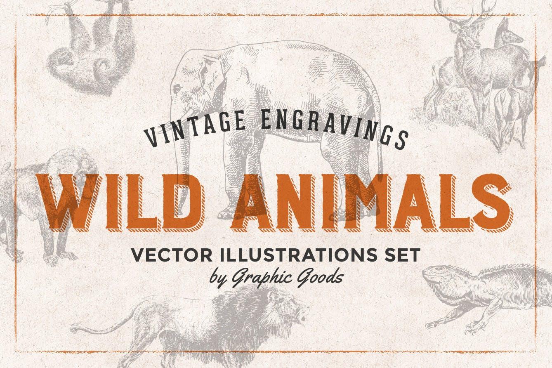 127个矢量化的各种野生动物矢量手绘风格相框装饰元素Wild Animals Engraving Illustration Set插图