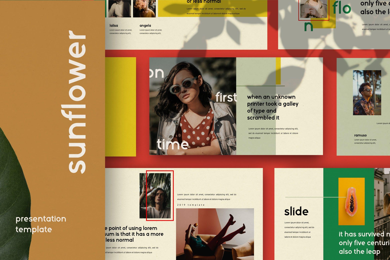 创意版式对比色风格多用途PPT幻灯片模板sunflowers keynote插图