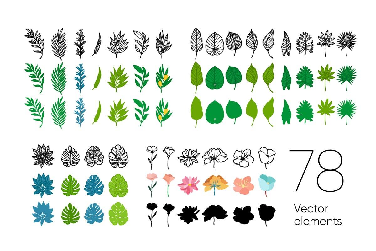 自然和花朵影响的艺术图案化妆品牌包装装饰图案Floral Backgrounds Patterns插图(9)
