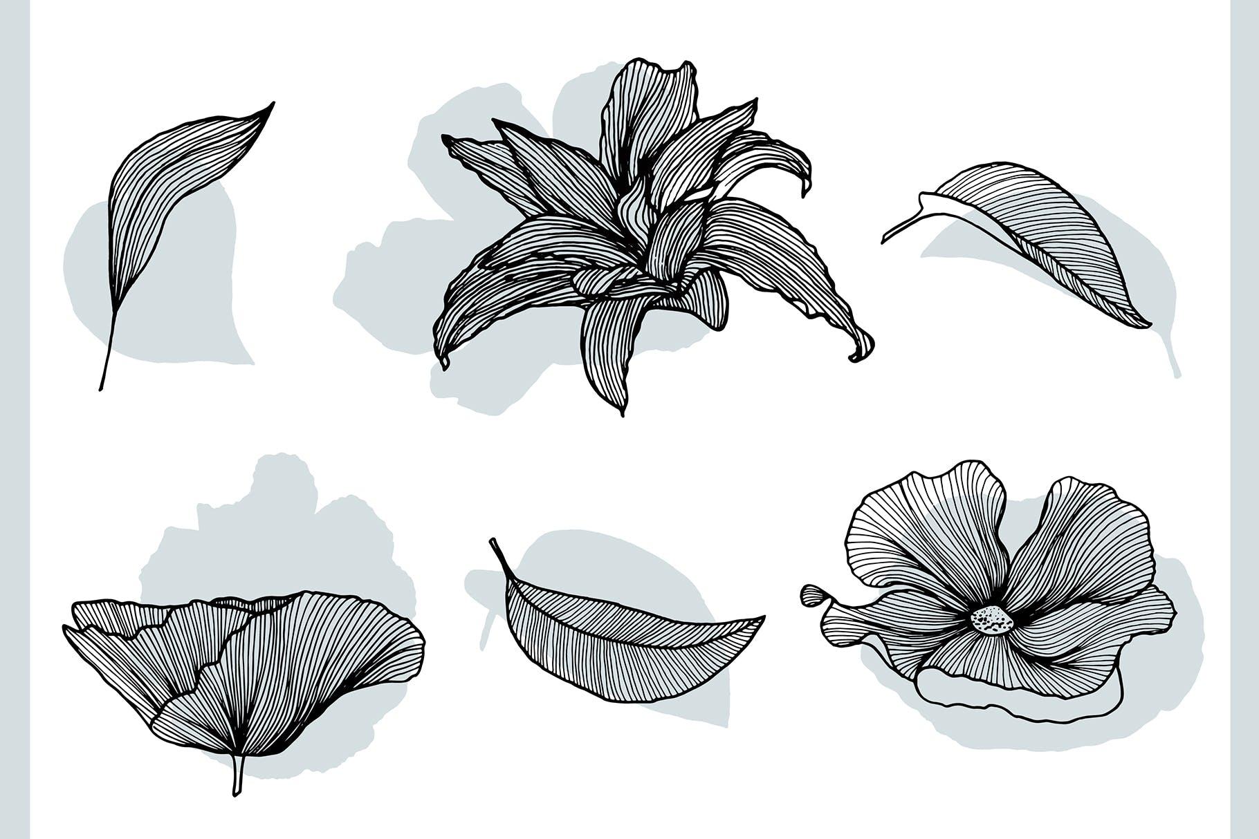 线条艺术花卉矢量图案元素Lineart Floral Patterns Elements插图(9)