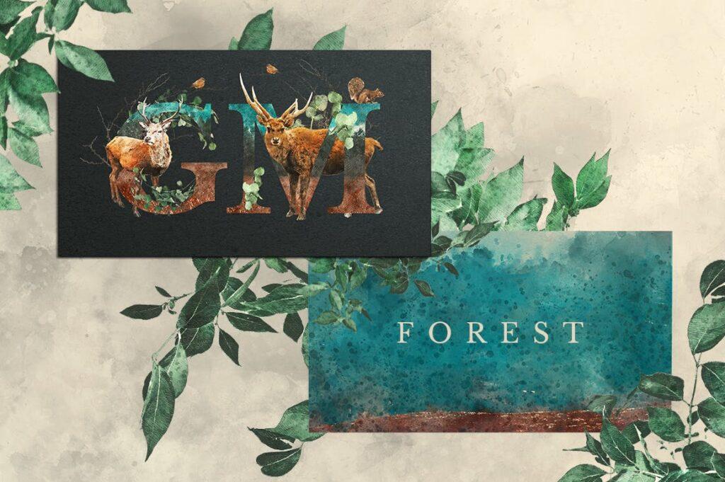 自然和森林主题元素装饰图案创意设计Forest Illustrations Graphics Kit插图(10)