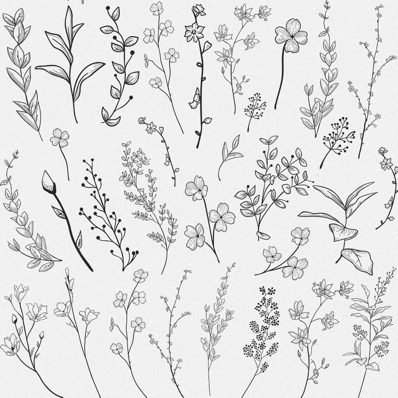 手绘乡村花卉涂鸦设计元素Greenery Collection167 Elements插图(9)