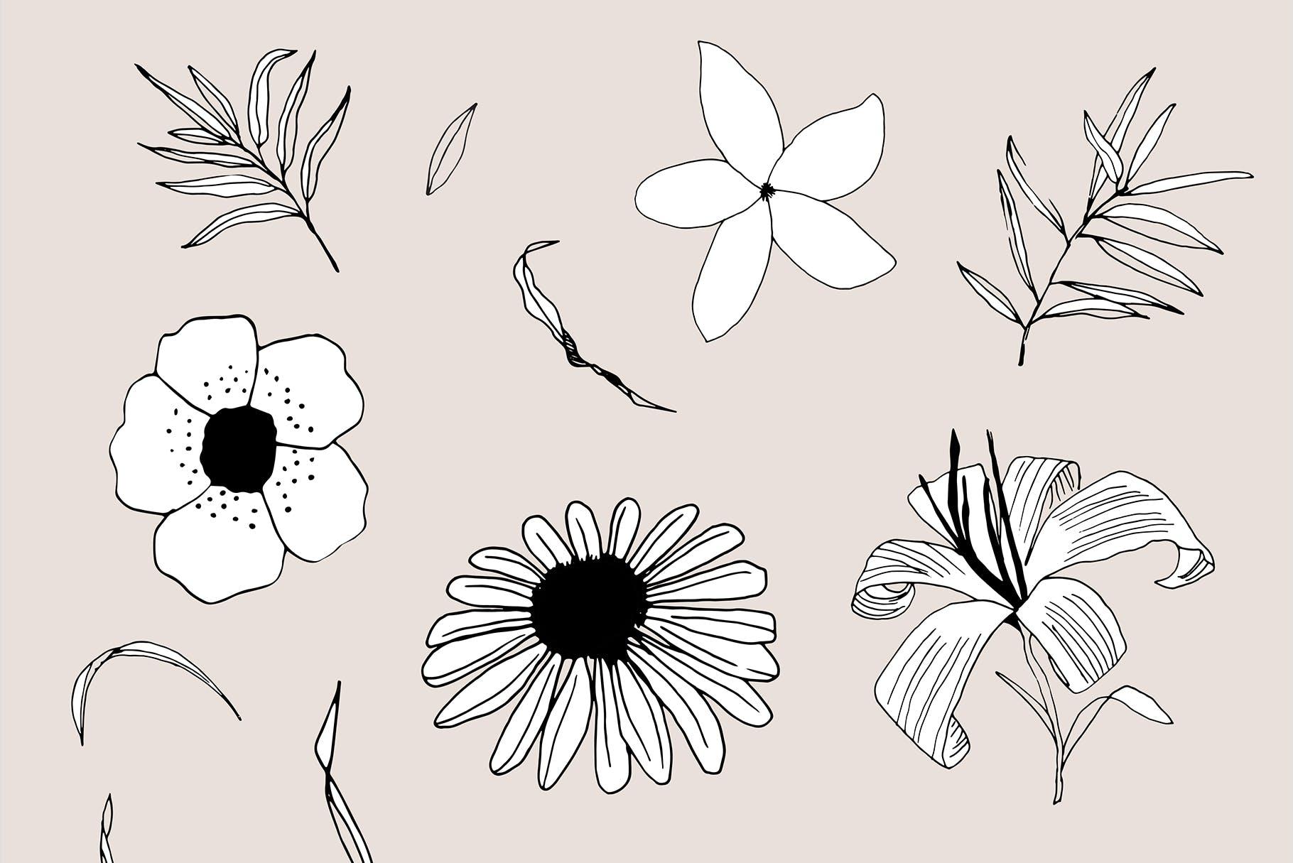 图形花卉图案装饰性元素图案花纹素材下载Graphic Flowers Patterns Elements插图(10)