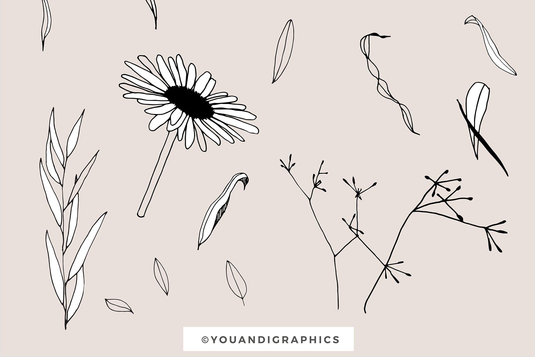 图形花卉图案装饰性元素图案花纹素材下载Graphic Flowers Patterns Elements插图(12)