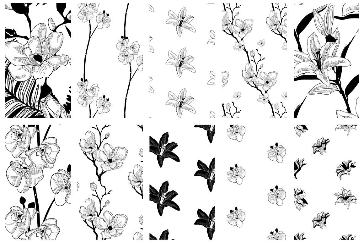 35个植物矢量图案装饰展示效果35 Patterns 8 Instagram Templates插图(14)