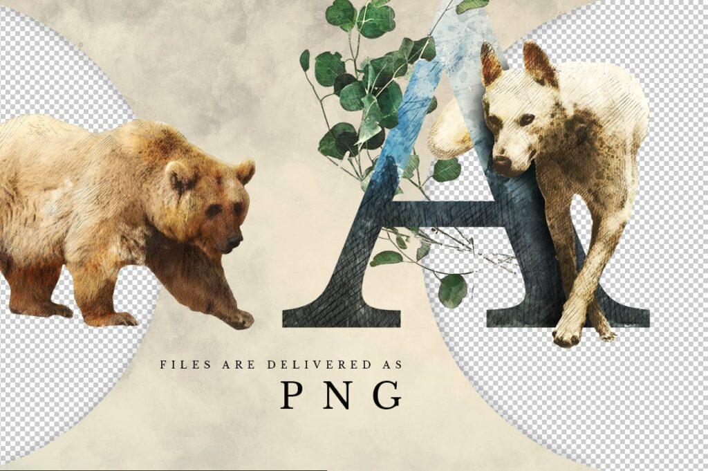自然和森林主题元素装饰图案创意设计Forest Illustrations Graphics Kit插图(15)