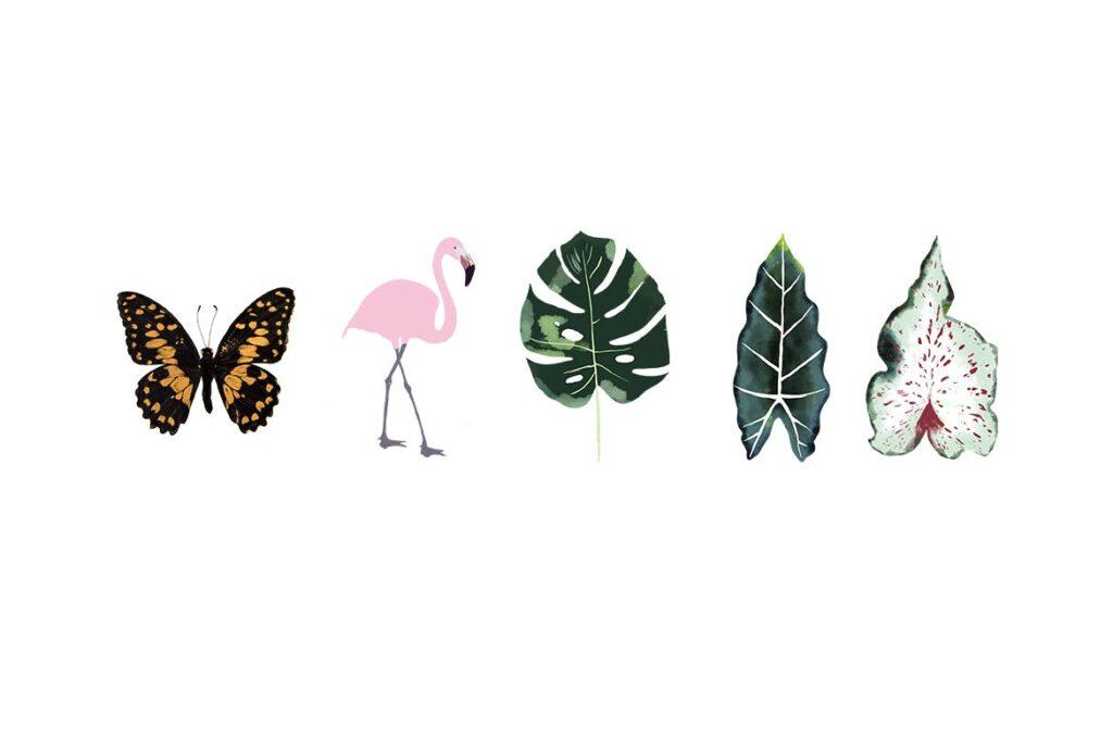 绿植花卉元素装饰图案素材Butterfly Leafs Pattern插图(1)