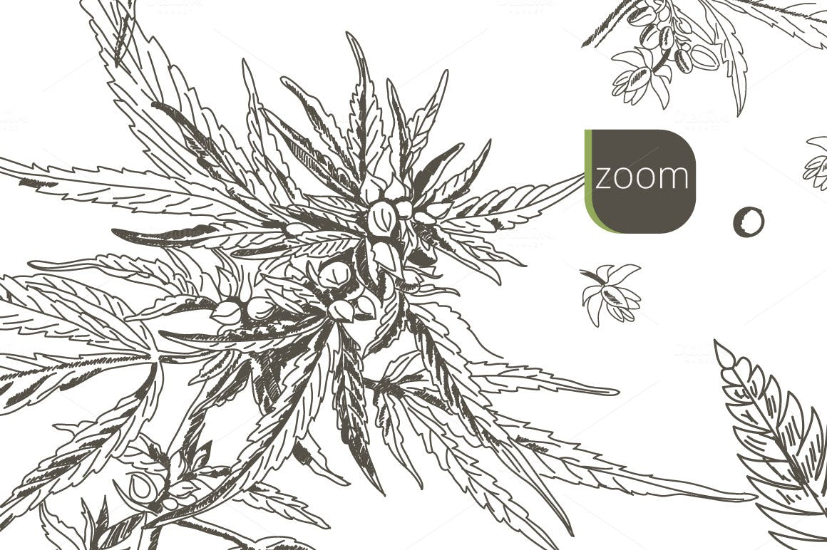绿植树叶矢量素材轮廓下载Marijuana pattern插图(1)