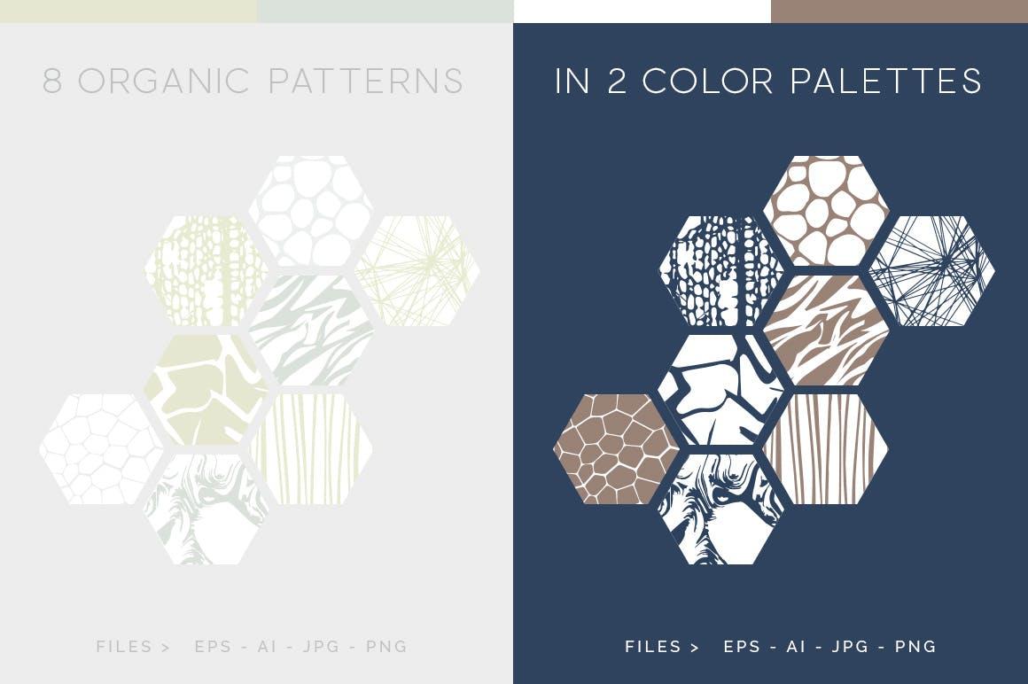 自然纹理大自然线条图案组合展示下载Organic Patterns 2 color palettes插图(1)