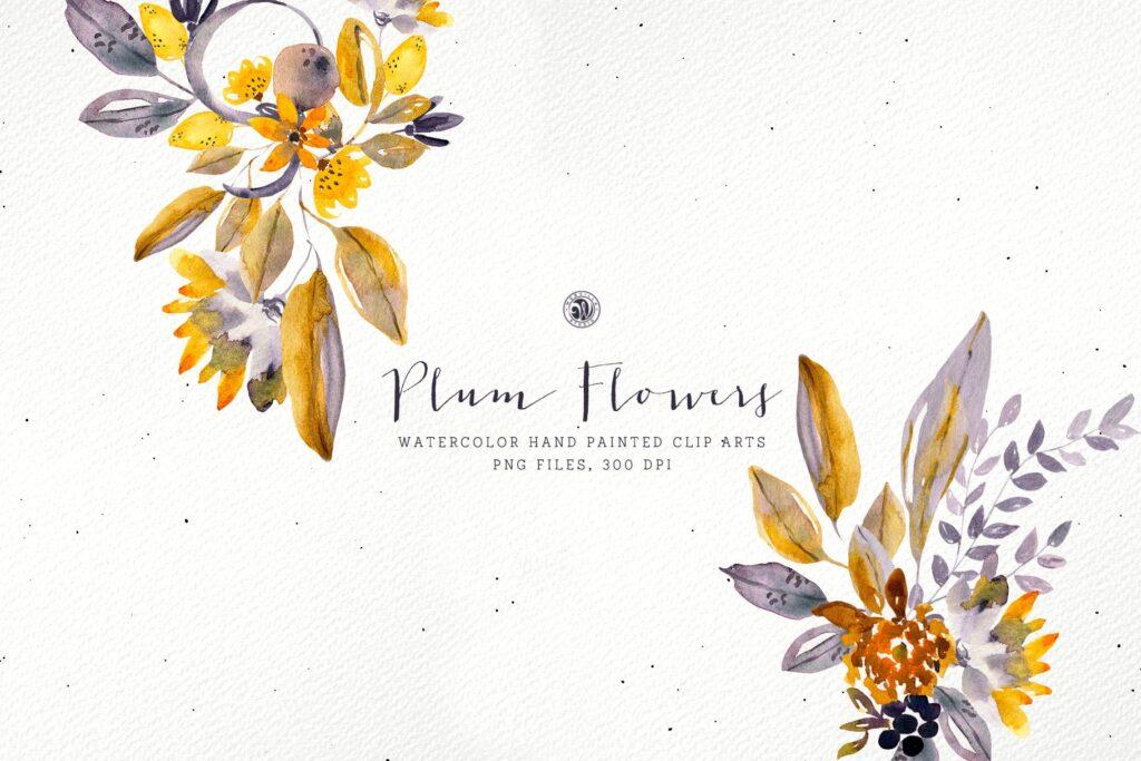 梅花水彩画手绘水彩画剪贴艺术装饰图案Plum Watercolor Flowers插图(1)