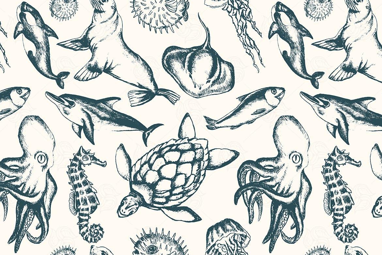 多品种海洋生物黑白手绘矢量图案花纹素材Sea Creatures hand drawn seamless pattern插图