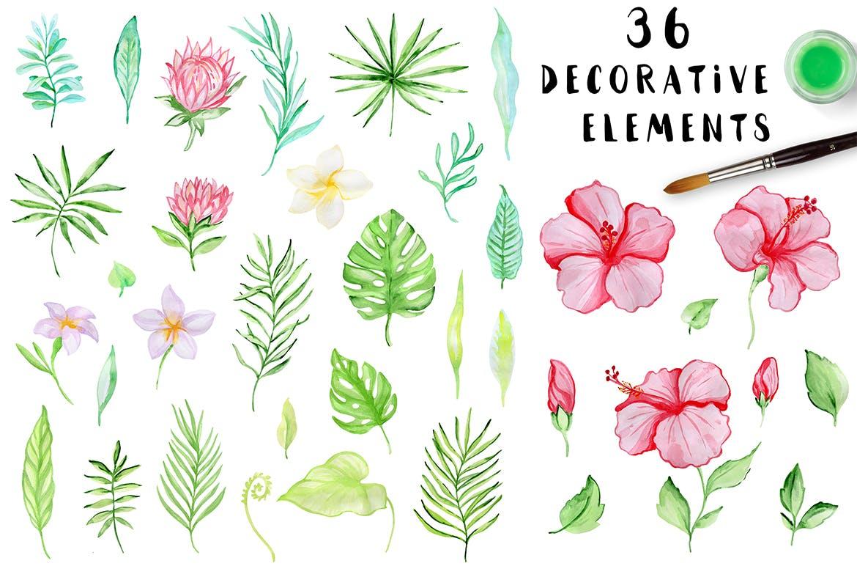 36套手绘热带水彩花卉元素装饰图案Tropical Summer Design Kit插图(1)