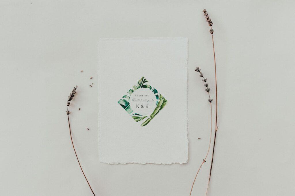 明亮色彩热带绿色植物结合婚礼装饰图案花纹Tropics & Coral Watercolor Set插图(1)
