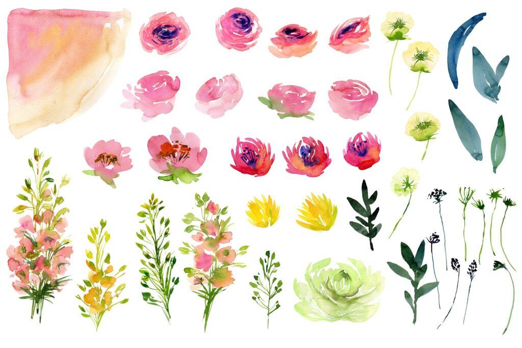 手绘水彩玫瑰画绿植花卉装饰图案Watercolor Country Flowers插图(1)