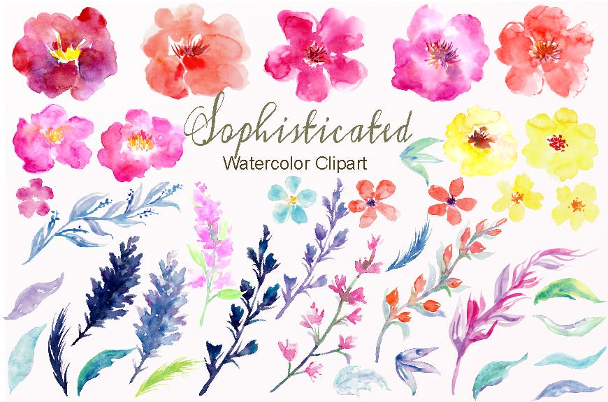 水彩花卉水彩剪纸紫色和橙色Watercolor Flower Collection Sophisticated插图(1)