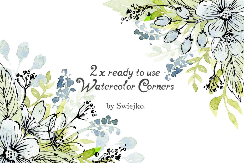 96副手绘花卉大合集及水墨风图案下载Watercolor and Ink flowers插图(1)