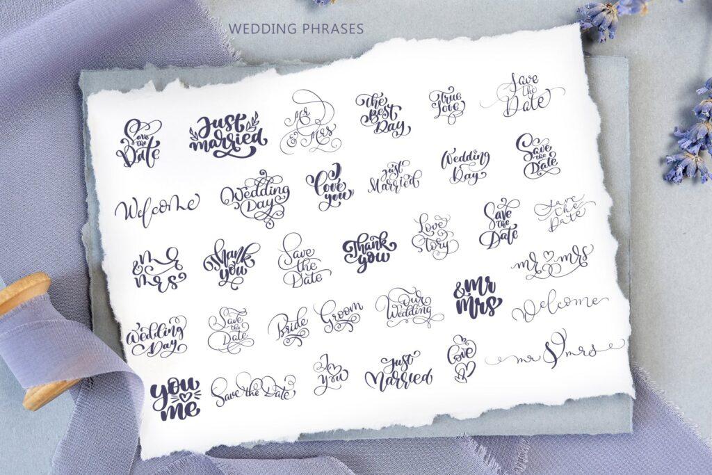 简单和经典婚礼邀请函主题装饰图案Wedding Vector Calligraphy插图(1)