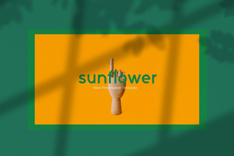 创意版式对比色风格多用途PPT幻灯片模板sunflowers keynote插图(1)