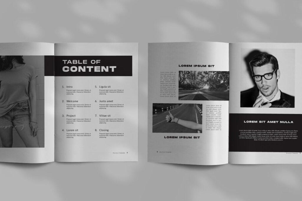 设计师工作/室内设计目录/产品目录/产品画册模板XL8RAPZ插图(2)
