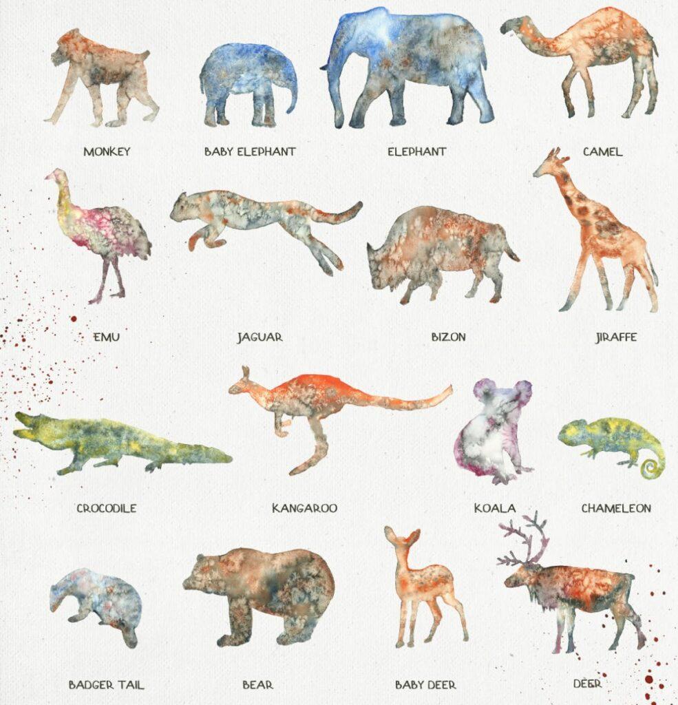 45个水彩画动物剪影的合集Animal Zone插图(2)