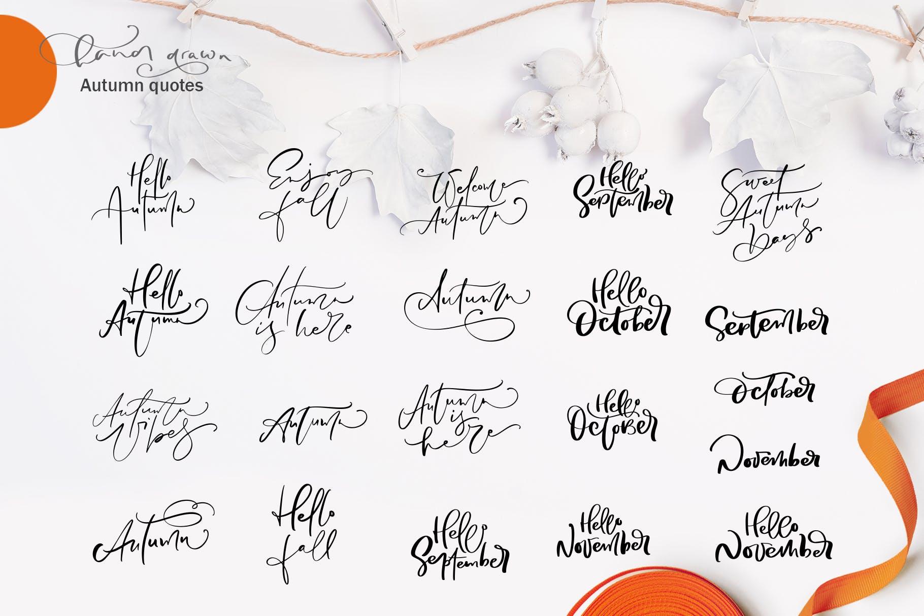 矢量书法和花卉元素图案花纹素材Autumn vector calligraphy floral elements插图(2)