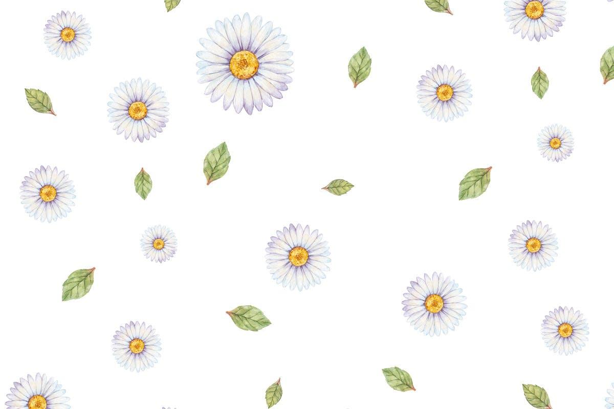 手绘水彩绿植图形文件设计元素装饰图案Blush Ivory Seamless Patterns插图(1)