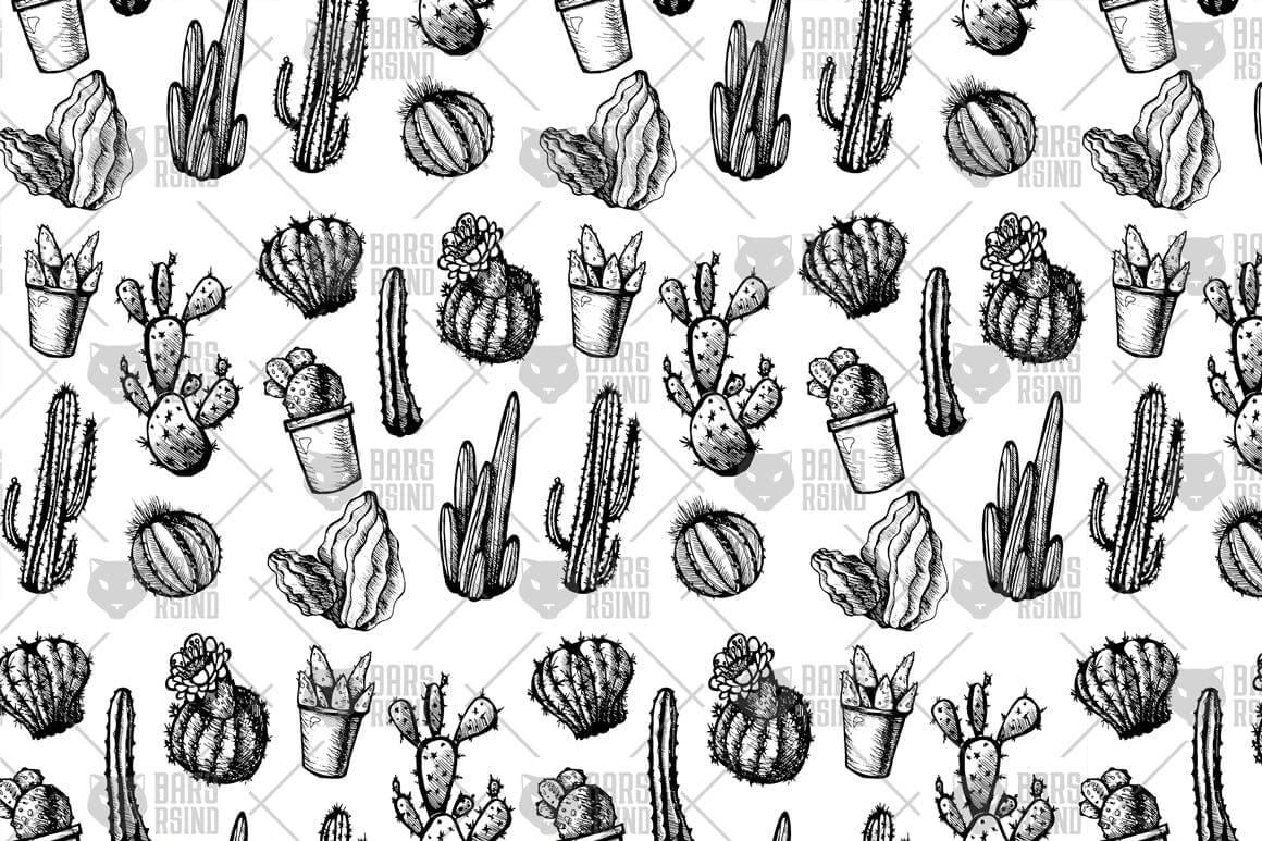 墨西哥仙人掌图案黑白包装图案装饰图案下载Mexican Cactus Patterns插图(2)