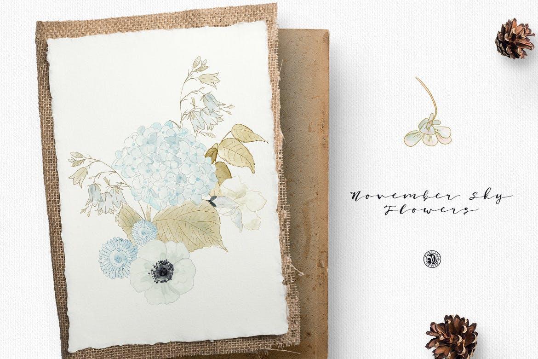 婚礼素雅白色花系装饰图案素材装饰图案下载November Sky Flowers插图(2)