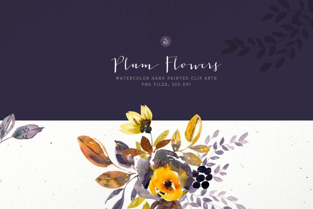 梅花水彩画手绘水彩画剪贴艺术装饰图案Plum Watercolor Flowers插图(2)