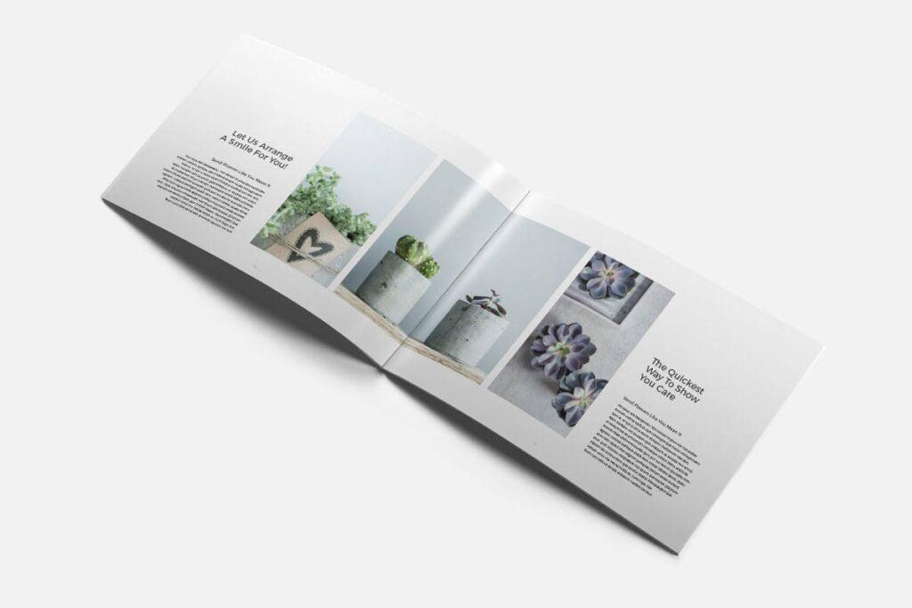 简约绿植居家生活类画册模板Rigel Brochure Template插图(2)